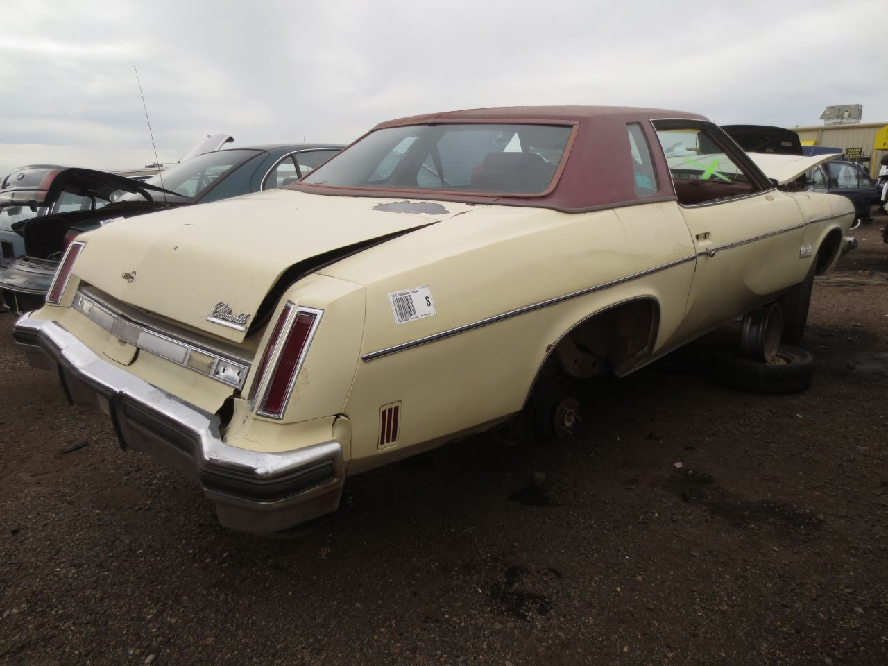 Junkyard find 1974 oldsmobile cutlass salon the truth for 1974 oldsmobile cutlass salon for sale