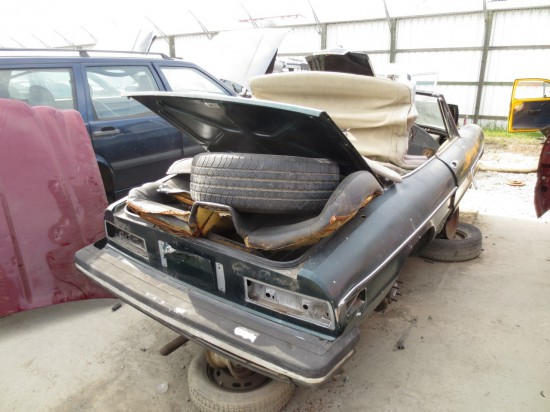 08 - 1978 Alfa Romeo Spider Down On the Junkyard - Picture courtesy of Murilee Martin