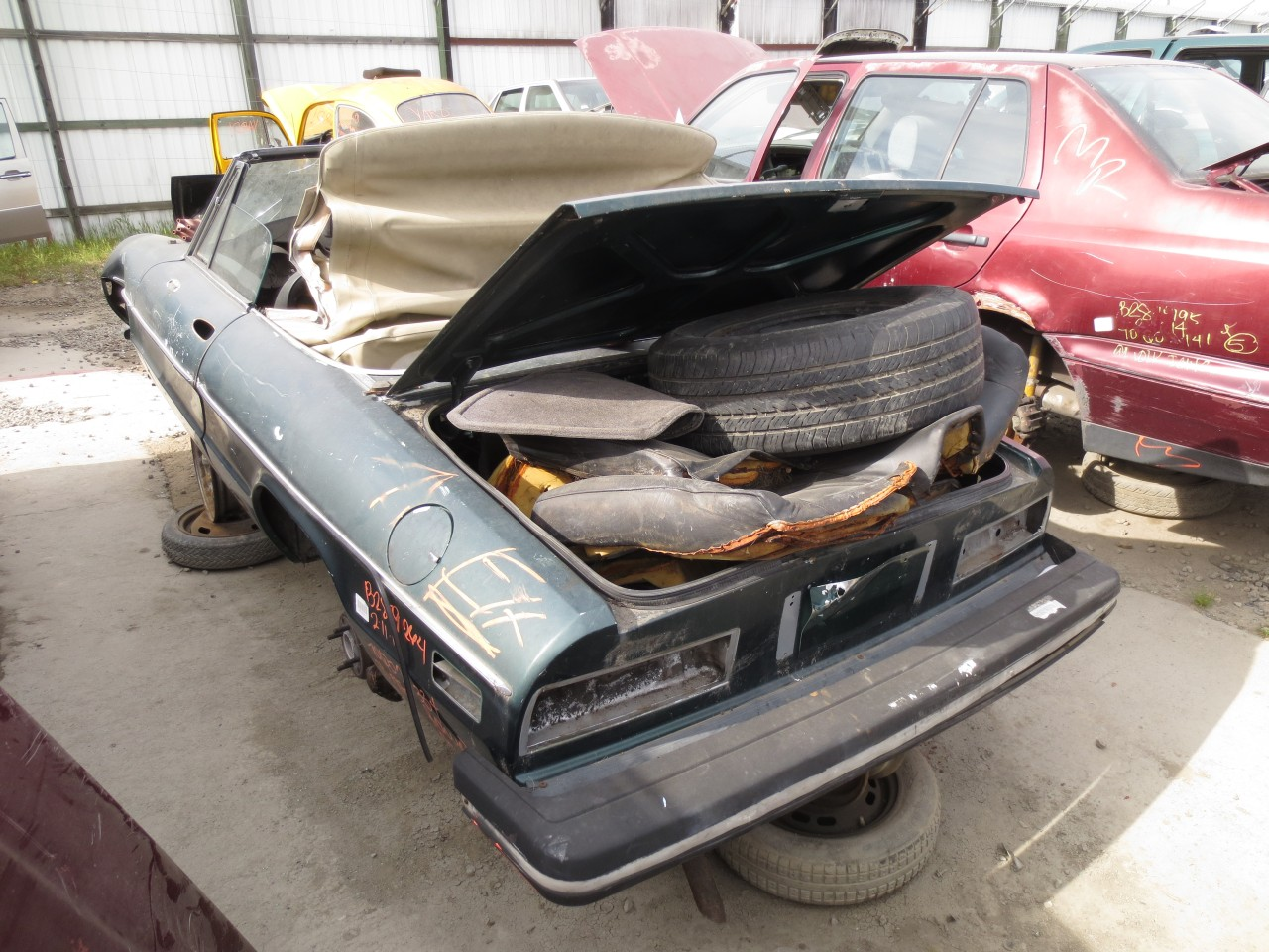 Junkyard Find: 1978 Alfa Romeo Spider - The Truth About Cars
