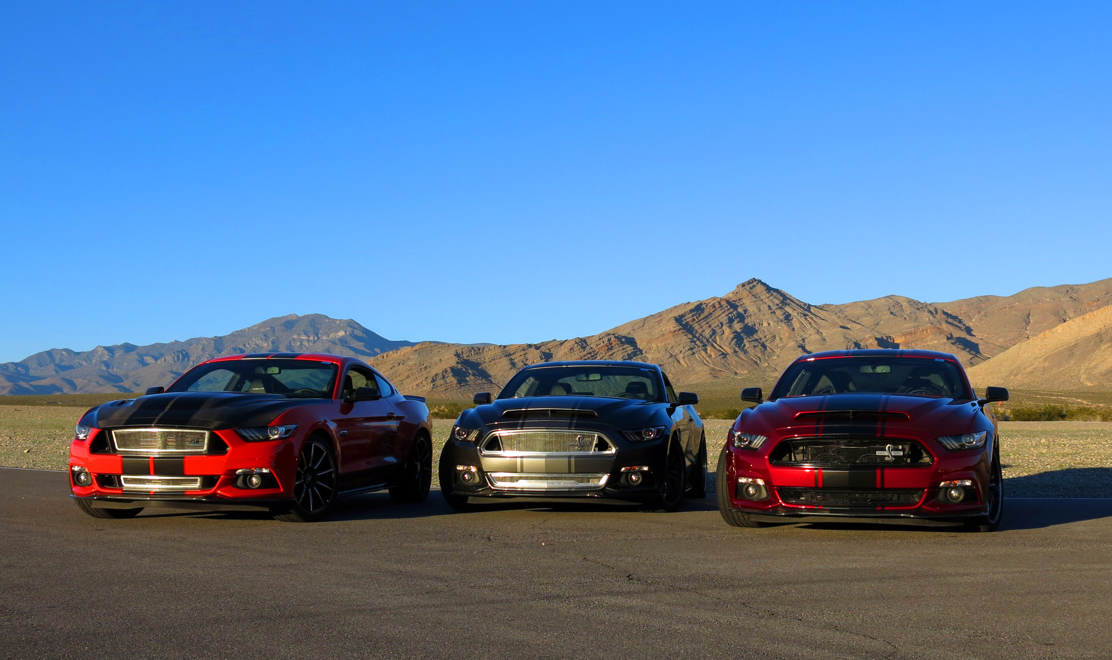Ford F150 Shelby 2017 >> 2016 Shelby Super Snake Review – Charming the Right Serpent