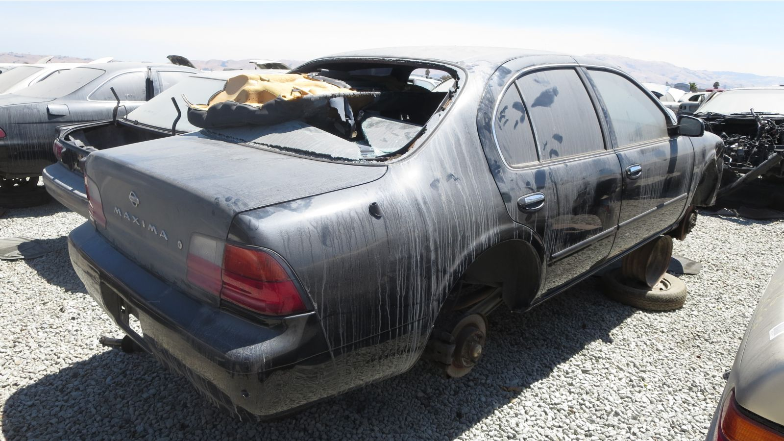 Junkyard Find 1996 Nissan Maxima Gxe With Five Speed The Truth Wiring Diagram Cefiro A32 In California Rh Rear View 2016 Murilee Martin